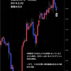 【 日経先物取引 過去の情報実例紹介 2019/2/23 】