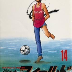 村枝賢一 俺たちのフィールド(14)
