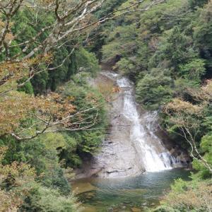 粟又の滝ハイキング