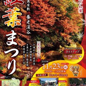 今朝のNHKで紅葉まつりが紹介されてました。^^