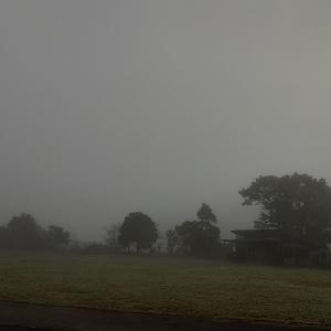 濃霧の学校