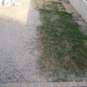 お庭の大改造
