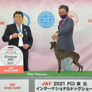 FCI東北インターナショナルドッグショーと近ごろのIGたち♪