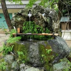 電車で行ける湧き水めぐり〜京都編①〜飲める・汲めるスポット