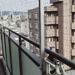平野区での鳩よけネット取付け施行