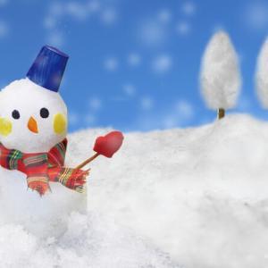 【雪の明日は裸虫の洗濯】とはどんな意味もことわざなの?