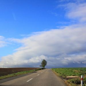 【書評】カミーノ!女ひとりスペイン巡礼、900キロ徒歩の旅