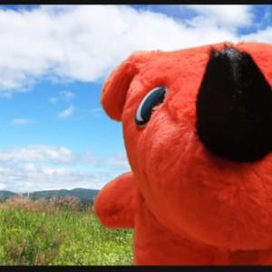 【ゆるキャラ観光】 #2 チーバくんの千葉名所案内 千葉の観光案内はボクにお任せあれ!