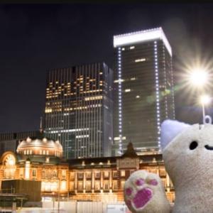 【ゆるキャラ観光】#3 ぴーにゃっつのきゃっつぴーが大都会の散策の旅へ往く