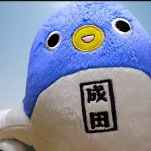 【ゆるキャラ観光】#5 うなりくん、東京、富士山のお空の旅を満喫する