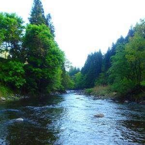 渓流釣り ウェーダーとウエット・タイツ