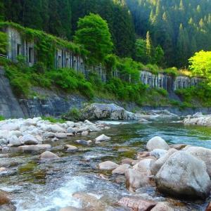 矢作川上流渓流釣行