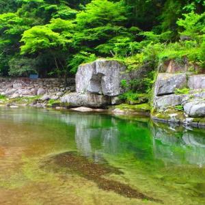 今週末も 矢作川上流渓流釣行