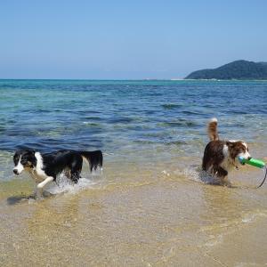 今日は「海の日」