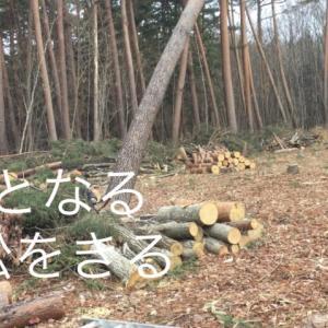 【家作りday1】木をきる/Cut tree