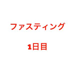 デトックス ミネラルファスティング(断食)レポート 断食1日目