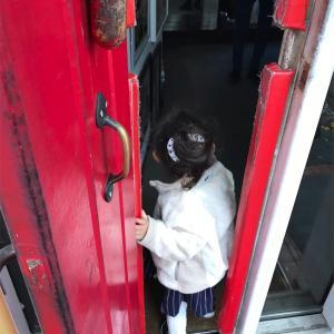 入口狭すぎ!!町田でちょっと変わったイタリアンレストラン『トレビノカフェ』