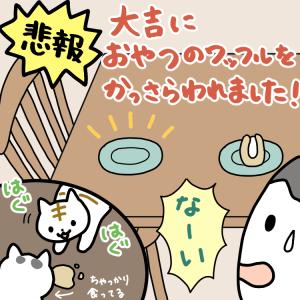 【1コマ】悲報