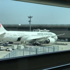 マレーシアへの航空券はJALとエアアジア