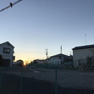 大江戸線延伸部の地上道路である補助230号線大泉二丁目地区で街路築造工事が始まりました