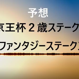 第55回京王杯2歳ステークス・第24回ファンタジーステークス 予想
