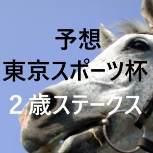 第24回東京スポーツ杯2歳ステークス 予想