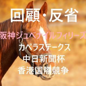 ジュベナイルフィリーズ・カペラステークス・中日新聞杯・香港国際競争 回顧・反省