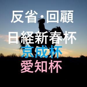 日経新春杯・京成杯・愛知杯 回顧・反省