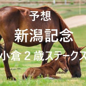 第56回新潟記念(GⅢ)第40回小倉2歳ステークス(GⅢ)追切評価・独自指数・予想