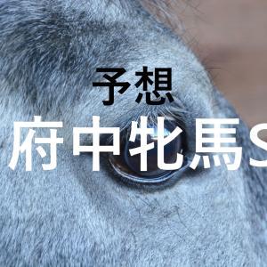 第68回府中牝馬ステークス(GⅡ)追切評価・独自指数・予想