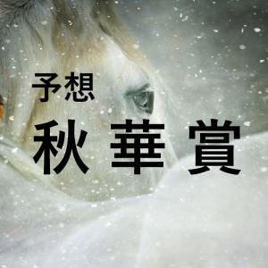 第25回秋華賞(GⅠ)追切評価・独自指数・予想
