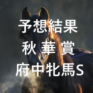第25回秋華賞(GⅠ)第68回府中牝馬ステークス(GⅡ)予想結果・回顧・反省