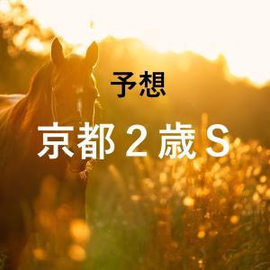 第7回京都2歳ステークス(GⅢ)追切評価・独自指数・予想
