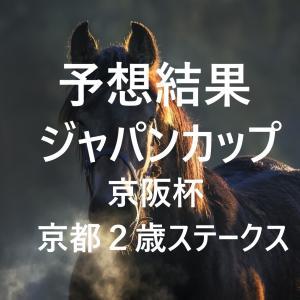 第40回ジャパンカップ(GⅠ)第65回京阪杯(GⅢ)第7回京都2歳ステークス(GⅢ)予想結果・回顧・反省