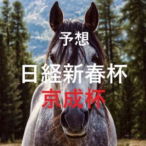 第68回日経新春杯(GⅡ)第61回京成杯(GⅢ)追切評価・独自指数・予想