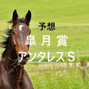 第81回皐月賞(GⅠ)第26回アンタレスステークス(GⅢ)追切評価・独自指数・予想