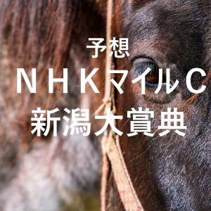 第26回NHKマイルカップ(GⅠ)第43回新潟大賞典(GⅢ)追切評価・独自指数・予想