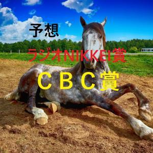 第70回ラジオNIKKEI賞(GⅢ)第57回CBC賞(GⅢ)追切評価・独自指数・予想
