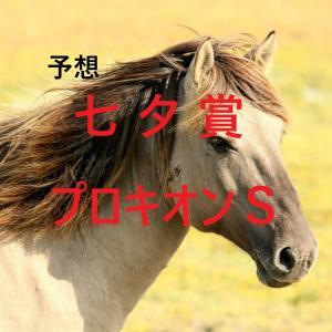 第57回七夕賞(GⅢ)第26回プロキオンステークス(GⅢ)追切評価・独自指数・予想