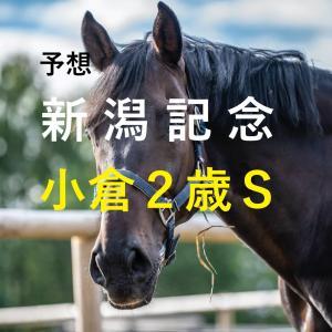 第57回新潟記念(GⅢ)第41回小倉2歳ステークス(GⅢ)追切評価・独自指数・予想