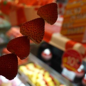 東京都墨田 墨田水族館金魚LOVE展&HIGH&LOW CAFE
