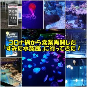コロナ禍から営業再開した「すみだ水族館」に行ってきた!