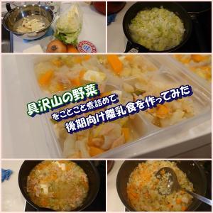 具沢山の野菜をことこと煮詰めて、後期向け離乳食を作ってみた