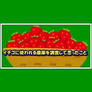 イチゴに使われる農薬を調査して思ったこと