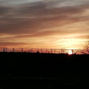 夕方散歩と夕日