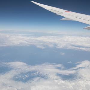 JAL上級会員(JGC)の魅力について【国内線】