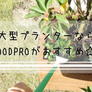 大型プランターならWOODPROがおすすめ☆ ガーデニングの幅が一気に広がる!