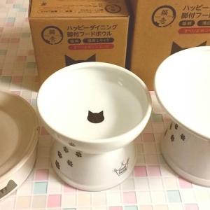 猫用の食器を初めて買い替えてみた