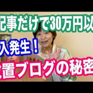 1記事だけで30万円以上の収入発生!専門特化放置ブログの秘密