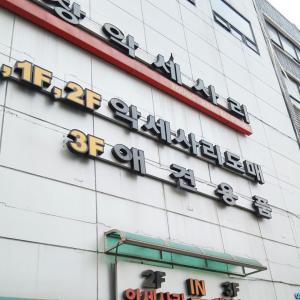 韓国で犬服爆買いの結果・・・